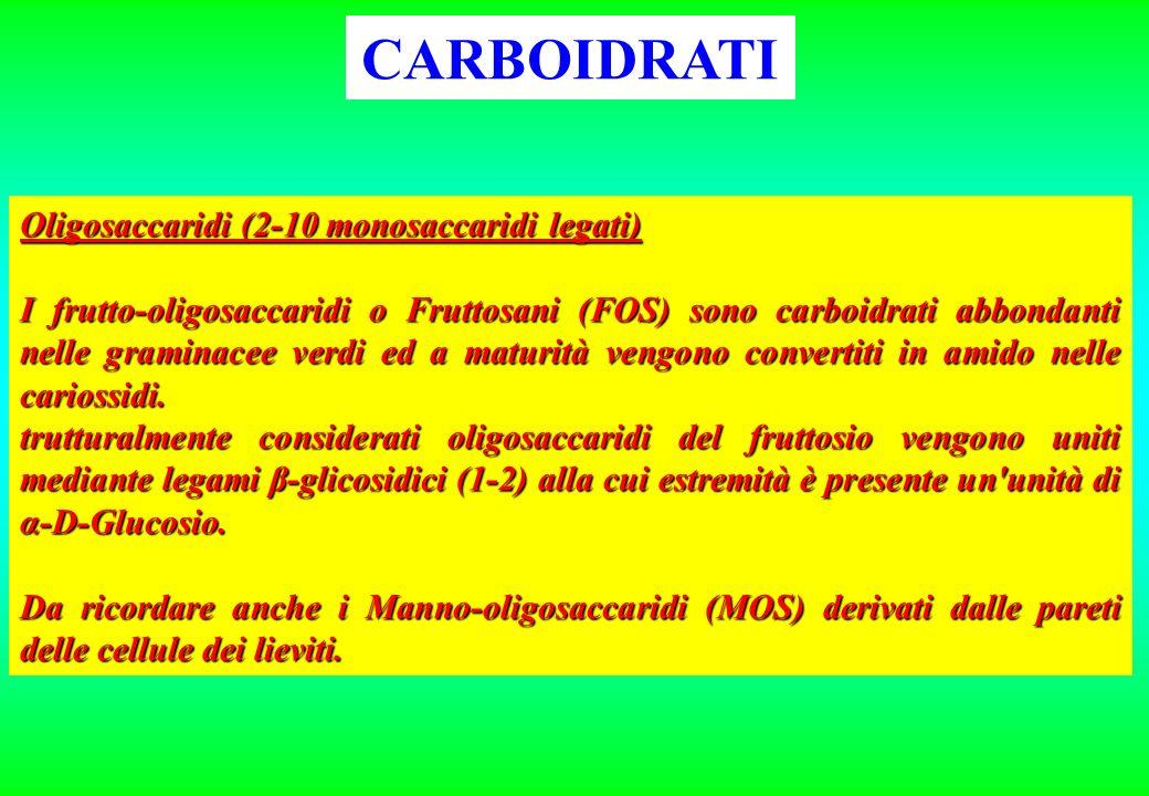 Oligosaccaridi (2-10 monosaccaridi legati) I frutto-oligosaccaridi o Fruttosani (FOS) sono carboidrati abbondanti nelle graminacee verdi ed a maturità