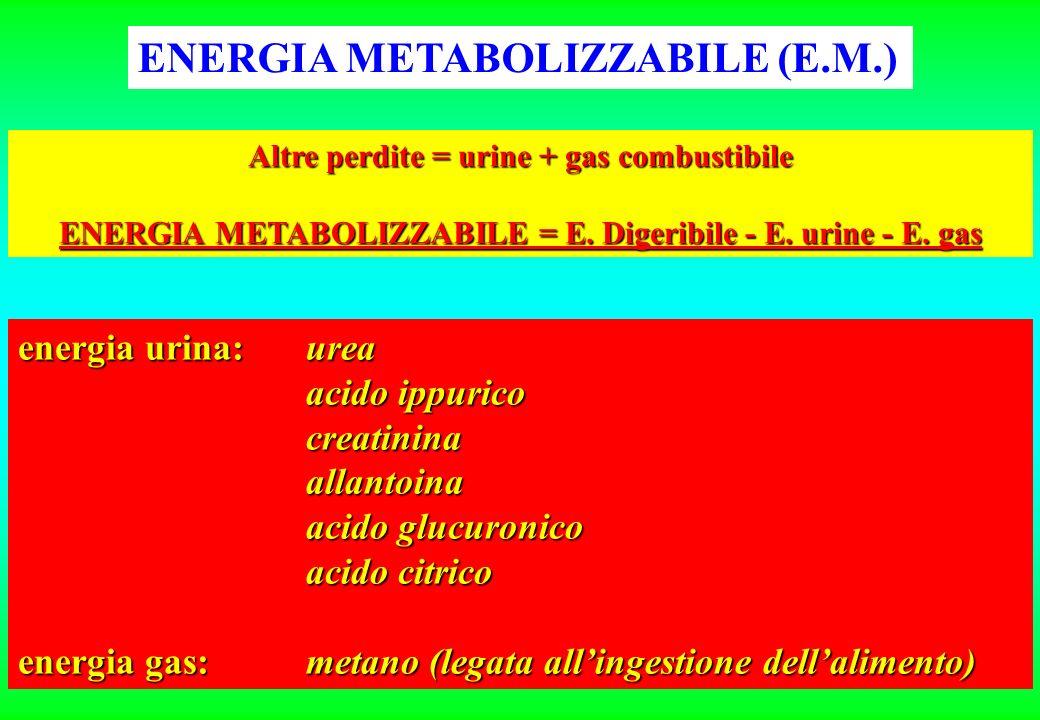 ENERGIA METABOLIZZABILE (E.M.) Altre perdite = urine + gas combustibile ENERGIA METABOLIZZABILE = E.