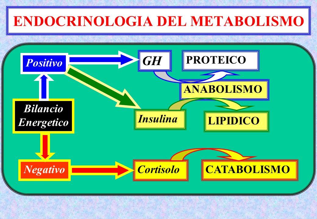 ENDOCRINOLOGIA DEL METABOLISMO ANABOLISMO Bilancio Energetico Positivo Negativo GH PROTEICO Insulina LIPIDICO CortisoloCATABOLISMO