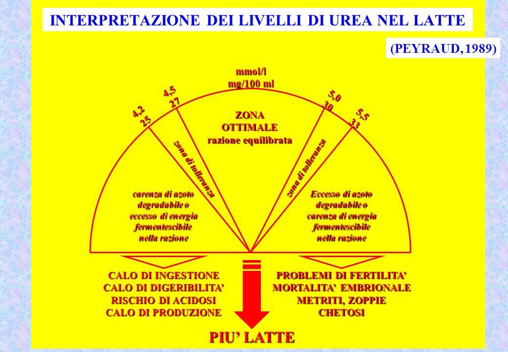Eccesso di azoto degradabile o carenza di energia fermentescibile nella razione carenza di azoto degradabile o eccesso di energia fermentescibile nella razione zona di tolleranza ZONAOTTIMALE razione equilibrata CALO DI INGESTIONE CALO DI DIGERIBILITA RISCHIO DI ACIDOSI CALO DI PRODUZIONE PROBLEMI DI FERTILITA MORTALITA EMBRIONALE METRITI, ZOPPIE CHETOSI PIU LATTE 4,225 4,527 5,030 5,533 mmol/l mg/100 ml INTERPRETAZIONE DEI LIVELLI DI UREA NEL LATTE (PEYRAUD, 1989)