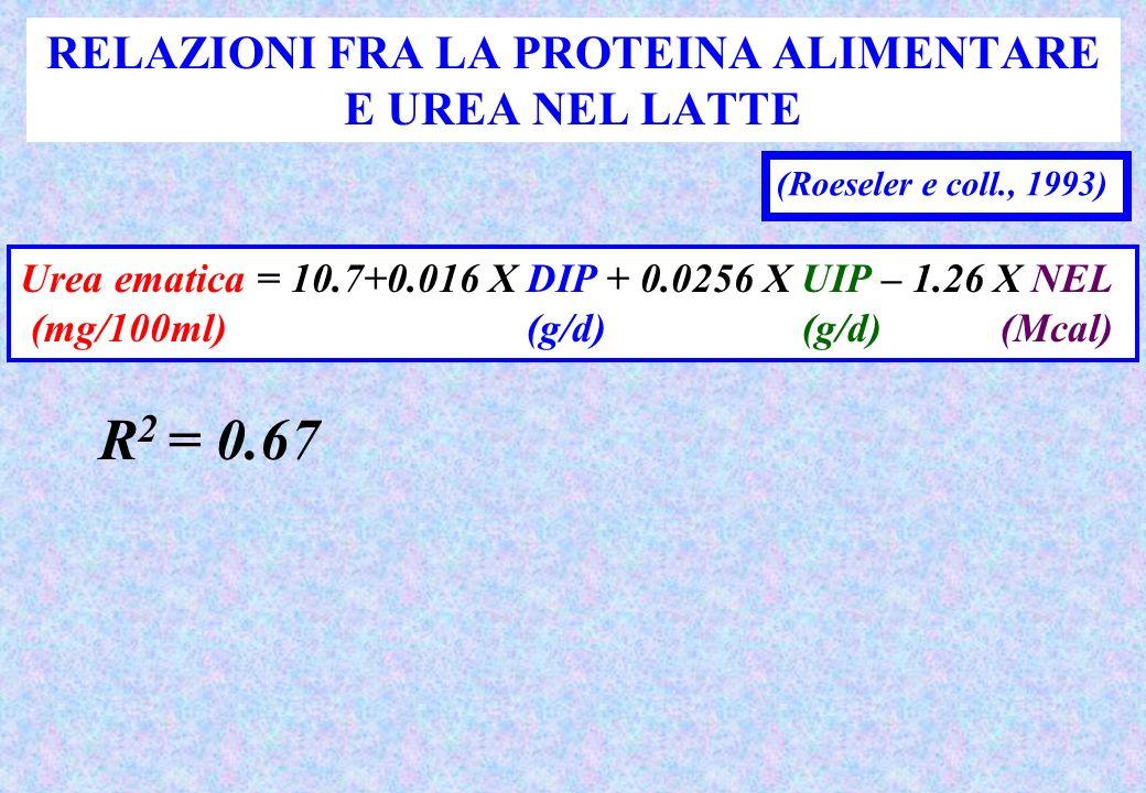 RELAZIONI FRA LA PROTEINA ALIMENTARE E UREA NEL LATTE (Roeseler e coll., 1993) Urea ematica = 10.7+0.016 X DIP + 0.0256 X UIP – 1.26 X NEL (mg/100ml) (g/d)(g/d)(Mcal) R 2 = 0.67
