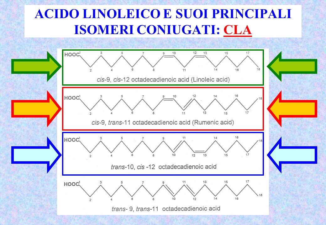 ACIDO LINOLEICO E SUOI PRINCIPALI ISOMERI CONIUGATI: CLA