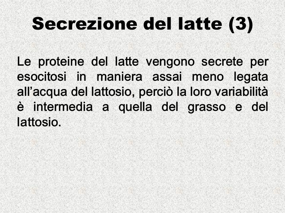 Secrezione del latte (3) Le proteine del latte vengono secrete per esocitosi in maniera assai meno legata allacqua del lattosio, perciò la loro variabilità è intermedia a quella del grasso e del lattosio.