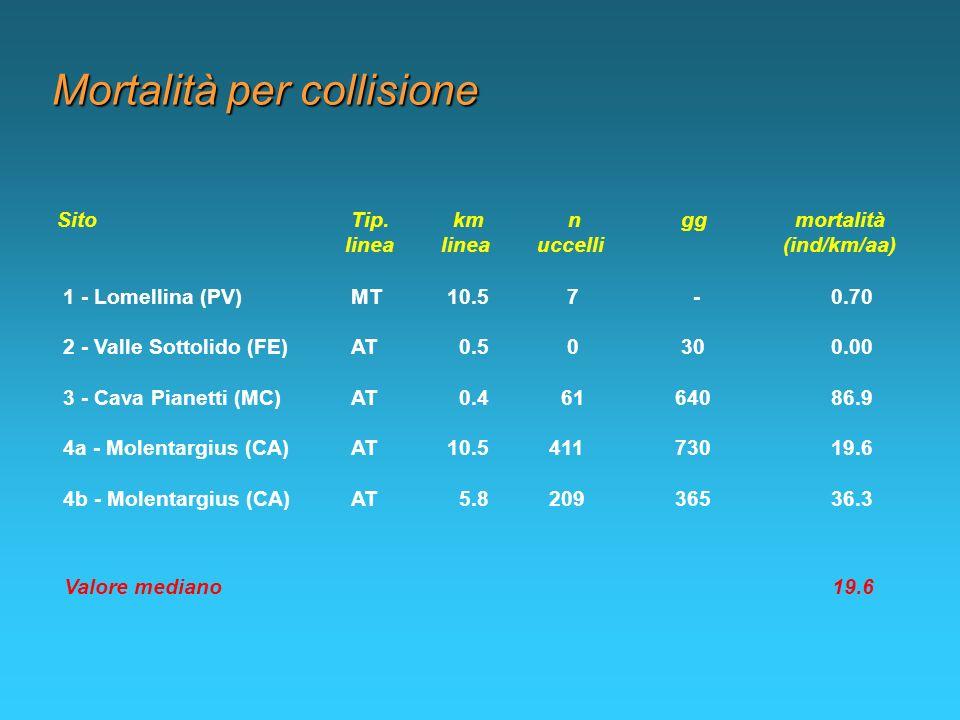 Mortalità per collisione 1 - Lomellina (PV)MT10.5 7 -0.70 Sito Tip. km n gg mortalità linealineauccelli (ind/km/aa) 2 - Valle Sottolido (FE)AT 0.5 0 3