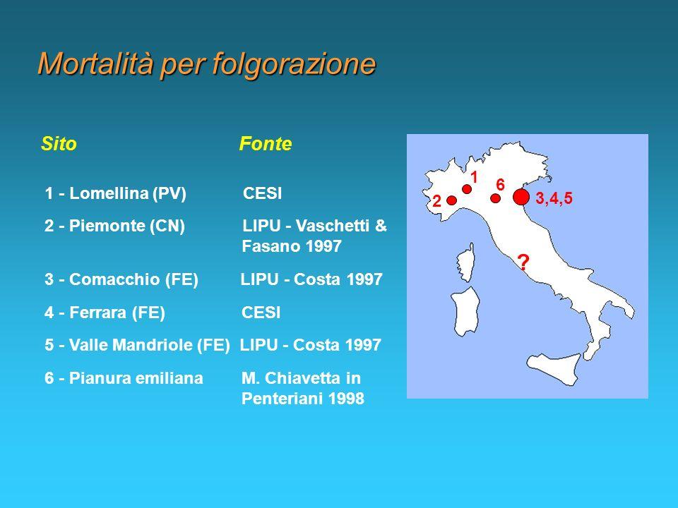 Mortalità per folgorazione 1 - Lomellina (PV) CESI Sito Fonte 2 - Piemonte (CN) LIPU - Vaschetti & Fasano 1997 3 - Comacchio (FE) LIPU - Costa 1997 4