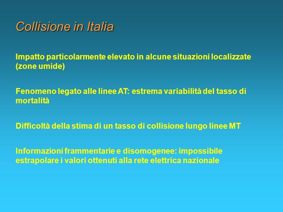 Collisione in Italia Impatto particolarmente elevato in alcune situazioni localizzate (zone umide) Fenomeno legato alle linee AT: estrema variabilità