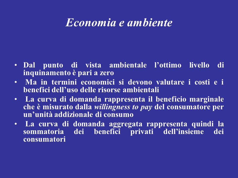 Economia e ambiente Dal punto di vista ambientale lottimo livello di inquinamento è pari a zero Ma in termini economici si devono valutare i costi e i