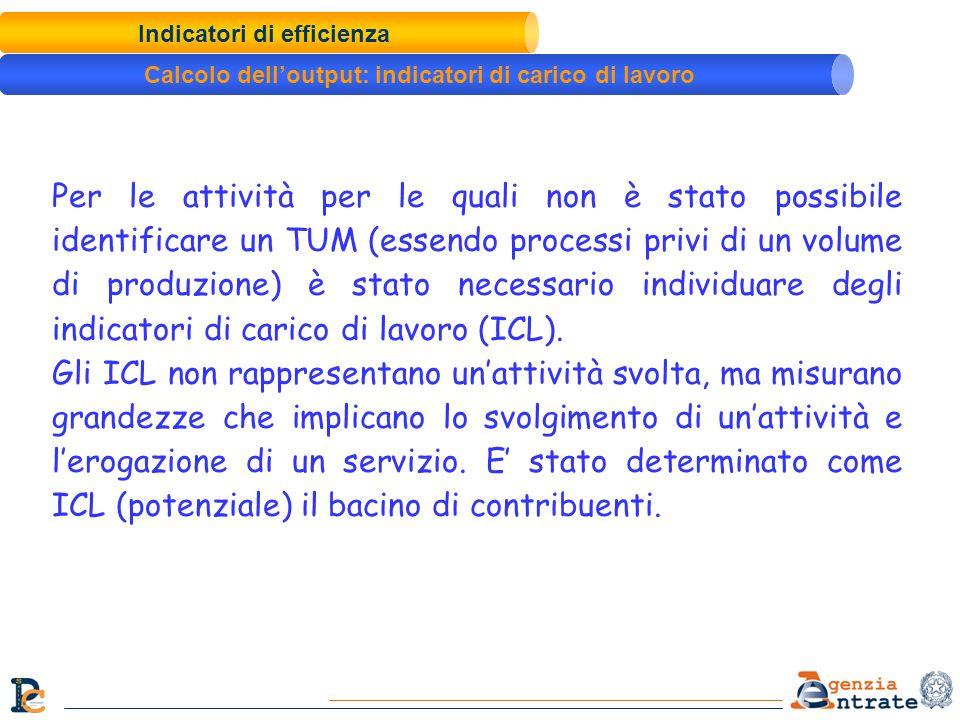 Indicatori di efficienza Calcolo delloutput: indicatori di carico di lavoro Per le attività per le quali non è stato possibile identificare un TUM (es