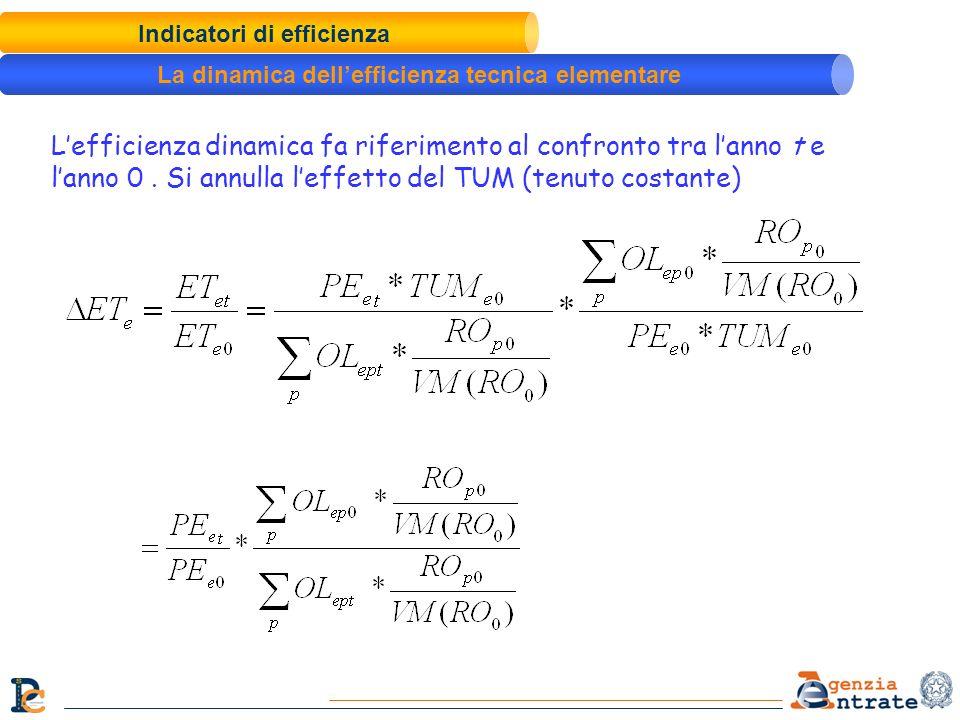 Indicatori di efficienza La dinamica dellefficienza tecnica elementare Lefficienza dinamica fa riferimento al confronto tra lanno t e lanno 0. Si annu
