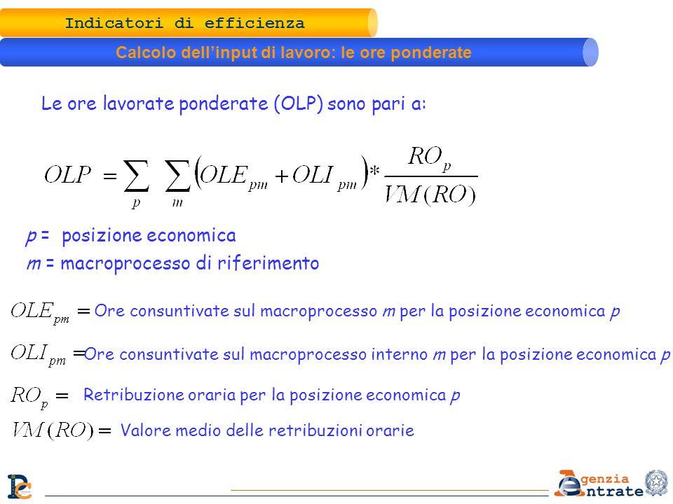 Indicatori di efficienza Calcolo dellinput di lavoro: le ore ponderate Le ore lavorate ponderate (OLP) sono pari a: p = posizione economica m = macrop
