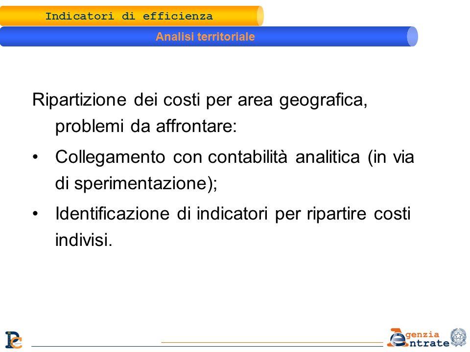 Ripartizione dei costi per area geografica, problemi da affrontare: Collegamento con contabilità analitica (in via di sperimentazione); Identificazione di indicatori per ripartire costi indivisi.