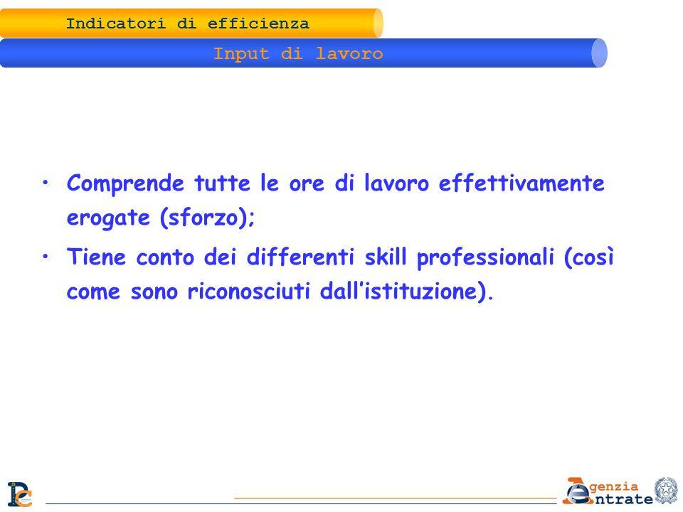 Indicatori di efficienza Input di lavoro Comprende tutte le ore di lavoro effettivamente erogate (sforzo); Tiene conto dei differenti skill profession