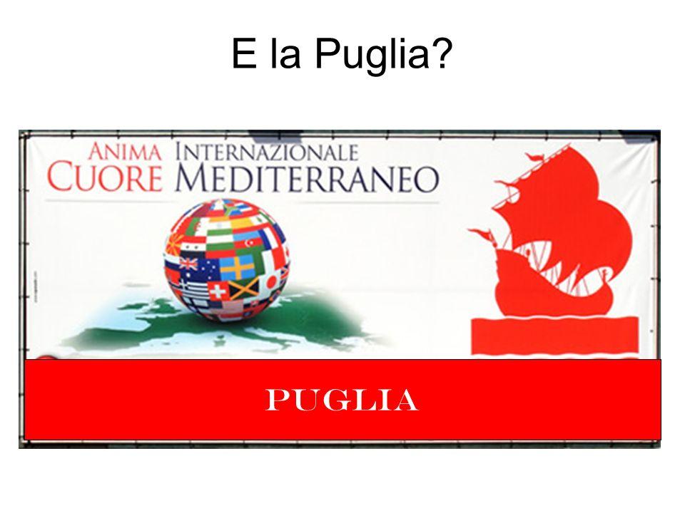 Soci privati Confindustria di Bari (8.9%) Centro Ricerche Fiat (4.9%) Magneti Marelli Powertrain (4.9%) Centro Studi Componenti per Veicoli (Bosch) (4.9%) Getrag (4.9%) Itel (5.24%) Mermec (5.24%) Masmec (5.24%) Soci pubblici Politecnico di Bari (20.5%) Università degli Studi di Bari (25.5%) Università del Salento (5.0%) Centri di ricerca Centro Laser (0.9%) Sintesi (3.88%) MEDIS: Soci