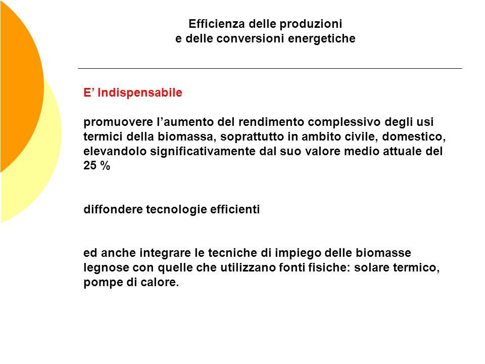Efficienza delle produzioni e delle conversioni energetiche E Indispensabile promuovere laumento del rendimento complessivo degli usi termici della bi