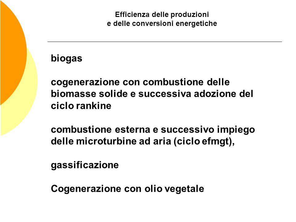 Efficienza delle produzioni e delle conversioni energetiche biogas cogenerazione con combustione delle biomasse solide e successiva adozione del ciclo