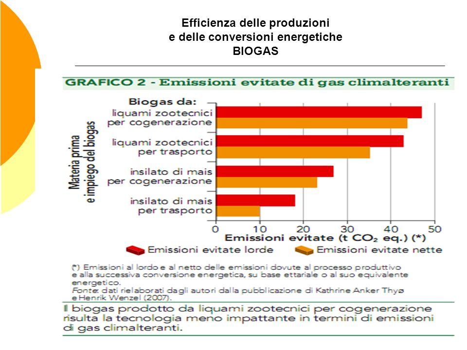 Efficienza delle produzioni e delle conversioni energetiche BIOGAS