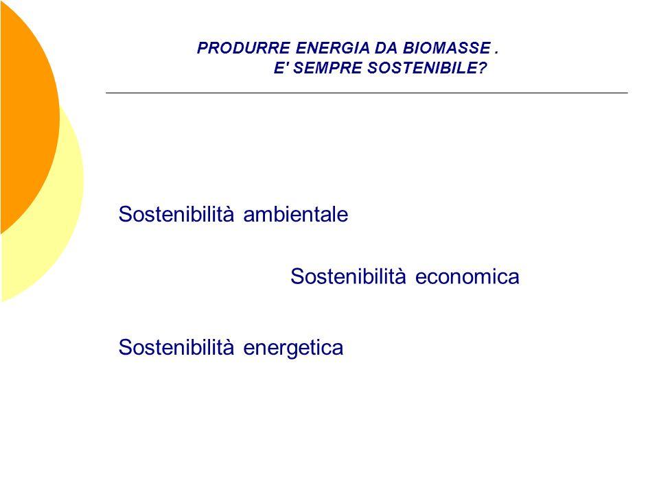 PRODURRE ENERGIA DA BIOMASSE. E' SEMPRE SOSTENIBILE? Sostenibilità ambientale Sostenibilità economica Sostenibilità energetica