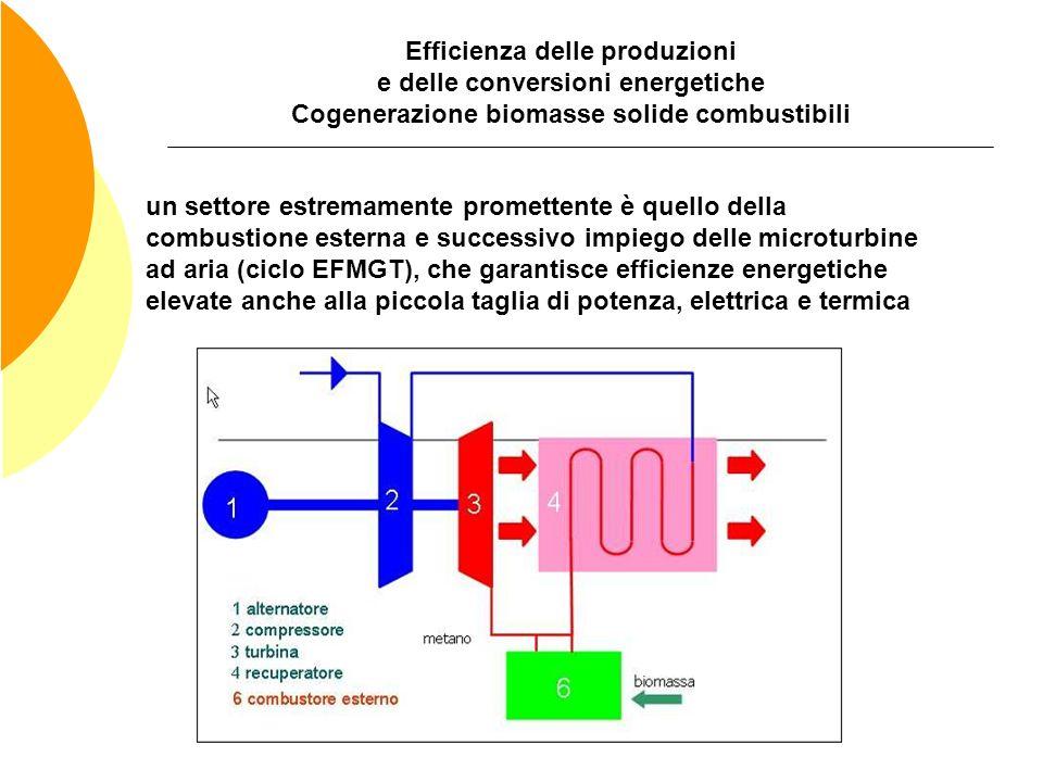 Efficienza delle produzioni e delle conversioni energetiche Cogenerazione biomasse solide combustibili un settore estremamente promettente è quello de