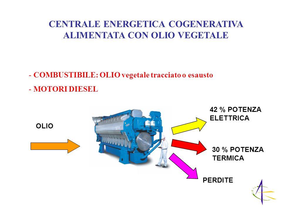 CENTRALE ENERGETICA COGENERATIVA ALIMENTATA CON OLIO VEGETALE - COMBUSTIBILE: OLIO vegetale tracciato o esausto - MOTORI DIESEL 42 % POTENZA ELETTRICA