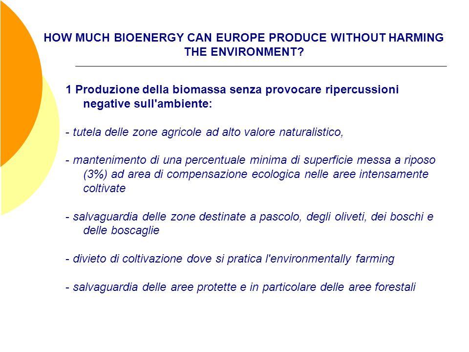 HOW MUCH BIOENERGY CAN EUROPE PRODUCE WITHOUT HARMING THE ENVIRONMENT? 1 Produzione della biomassa senza provocare ripercussioni negative sull'ambient