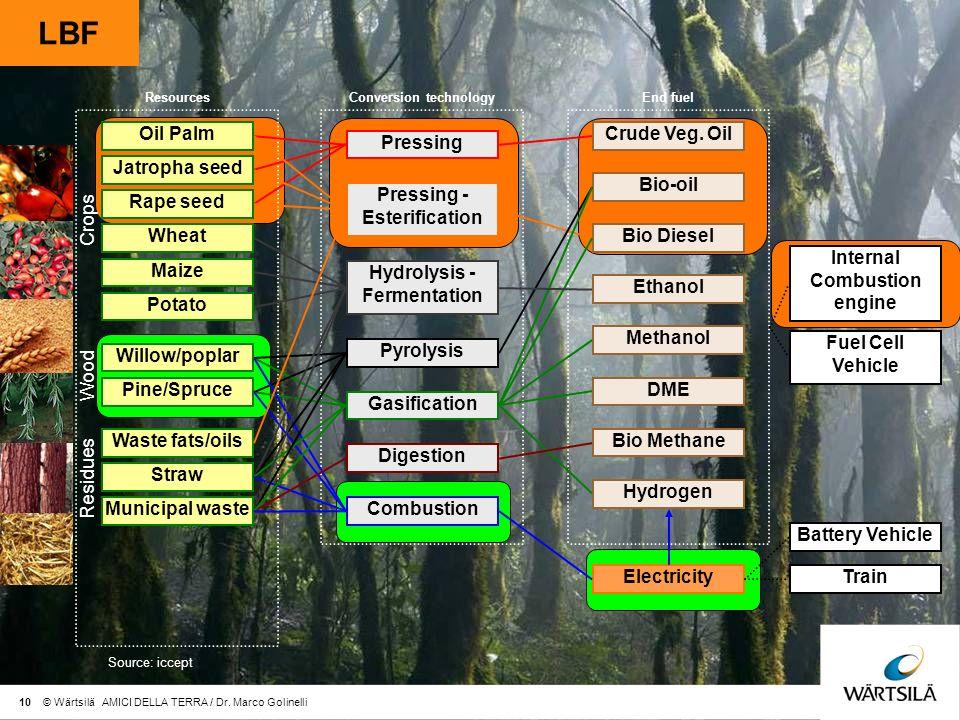 LBF Pressing Hydrolysis - Fermentation Pyrolysis Pressing - Esterification Gasification Combustion Oil Palm Jatropha seed Willow/poplar Pine/Spruce Waste fats/oils Rape seed Wheat Maize Potato Straw Crude Veg.