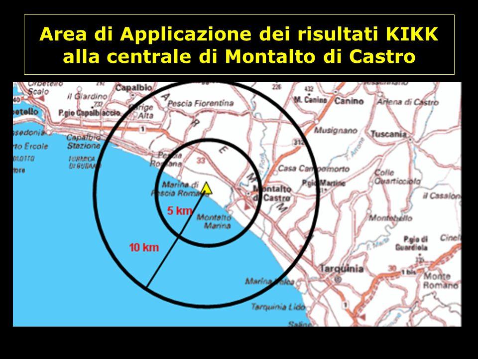 Area di Applicazione dei risultati KIKK alla centrale di Montalto di Castro