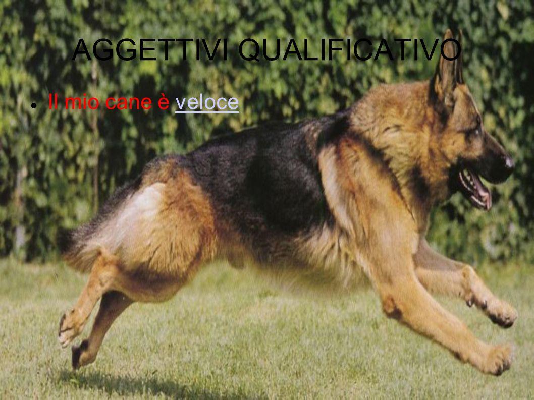 AGGETTIVI QUALIFICATIVO Il mio cane è veloceveloce