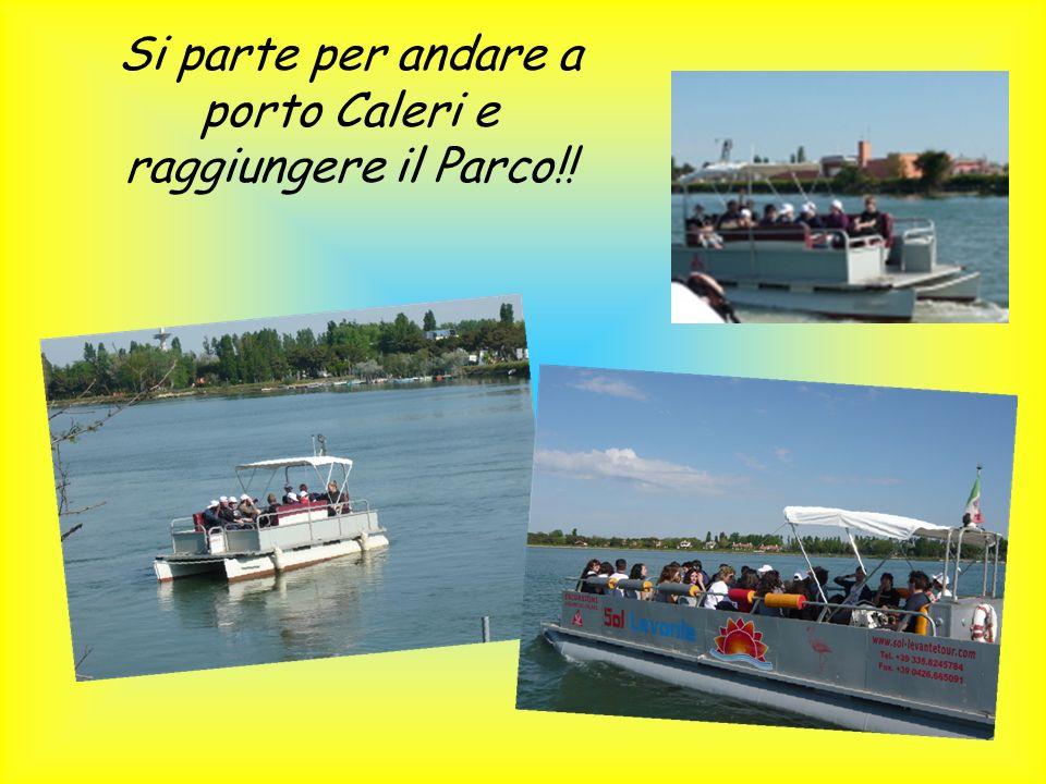 Si parte per andare a porto Caleri e raggiungere il Parco!!