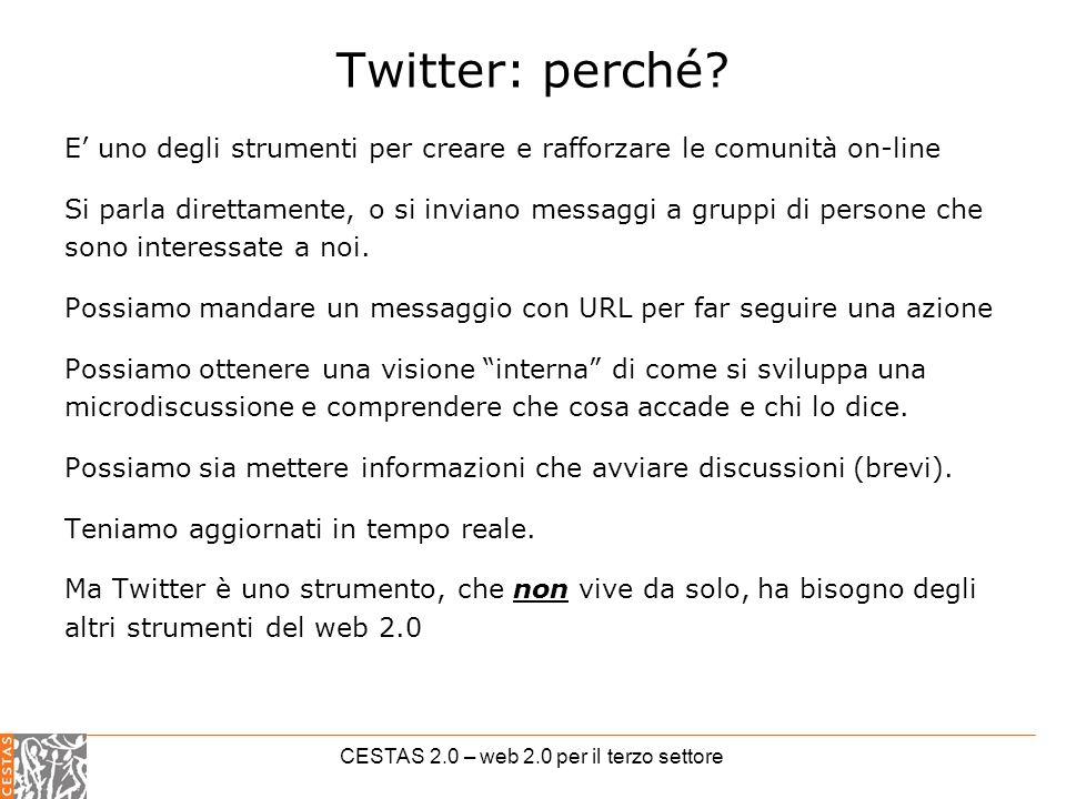 CESTAS 2.0 – web 2.0 per il terzo settore Twitter: perché.