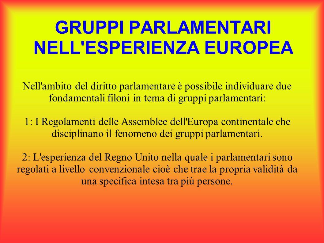 GRUPPI PARLAMENTARI NELL'ESPERIENZA EUROPEA Nell'ambito del diritto parlamentare è possibile individuare due fondamentali filoni in tema di gruppi par