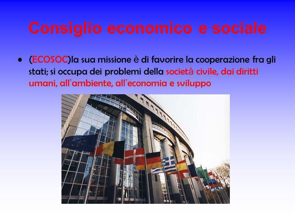 Consiglio economico e sociale (ECOSOC)la sua missione è di favorire la cooperazione fra gli stati; si occupa dei problemi della societ à civile, dai d