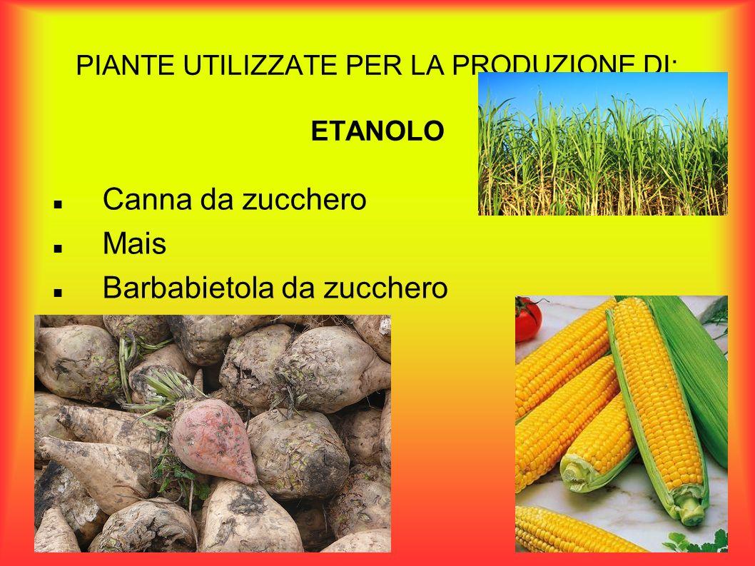 VANTAGGI DELLA PRODUZIONE BIOCARBURANTI I vantaggi della produzione di biocarburanti sono vari.