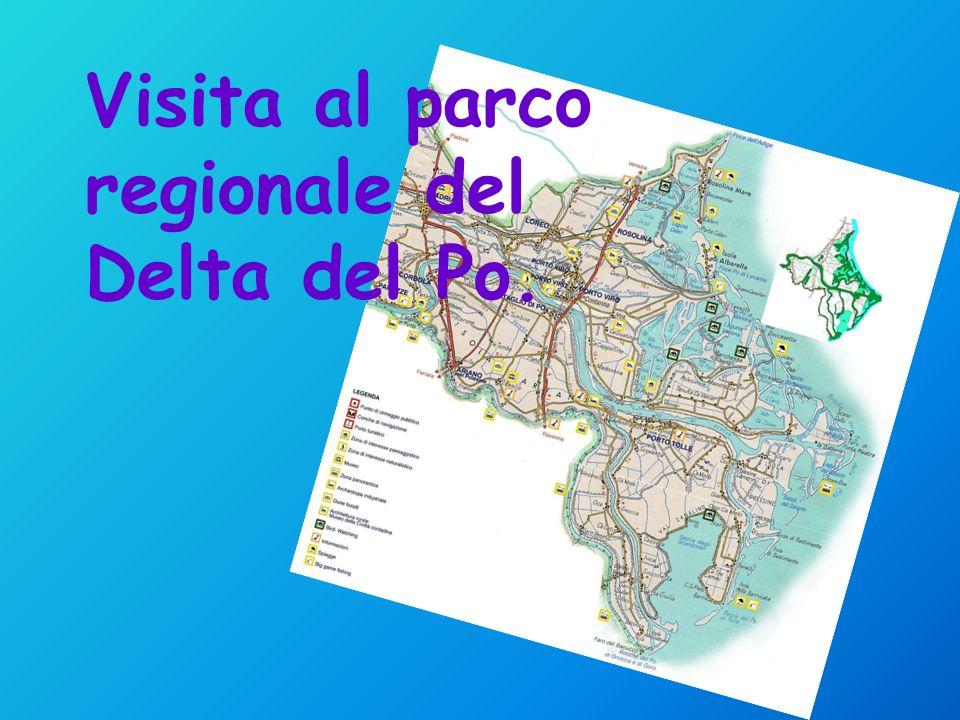 Visita al parco regionale del Delta del Po.