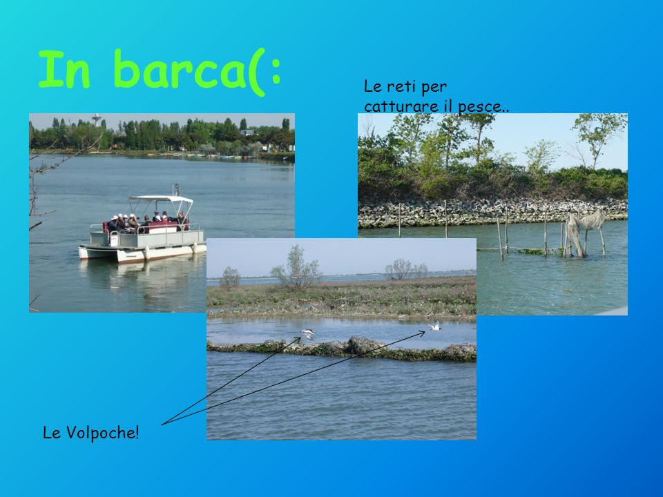 Le Volpoche! Le reti per catturare il pesce.. In barca(: