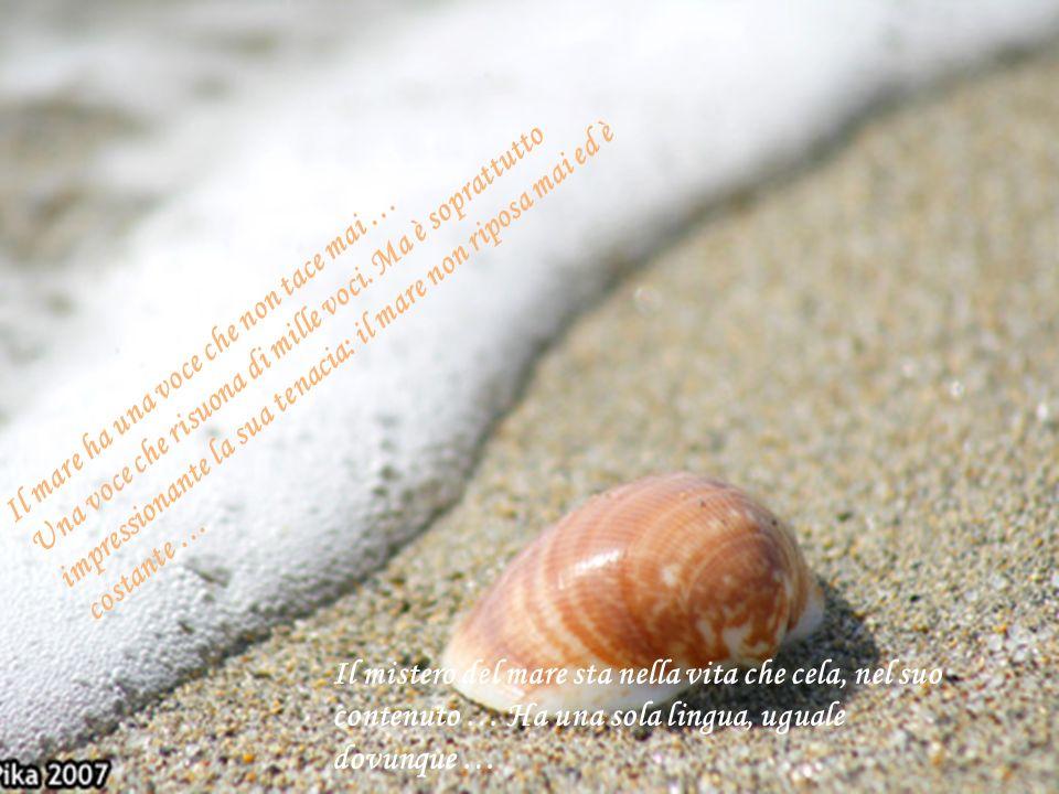 Il mare ha una voce che non tace mai … Una voce che risuona di mille voci. Ma è soprattutto impressionante la sua tenacia: il mare non riposa mai ed è