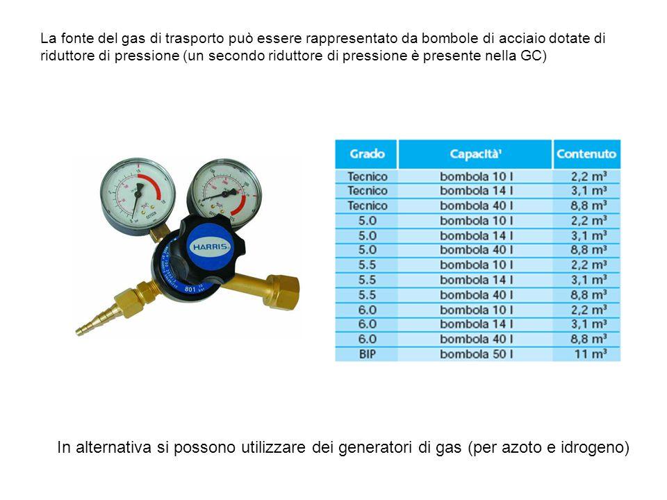 La fonte del gas di trasporto può essere rappresentato da bombole di acciaio dotate di riduttore di pressione (un secondo riduttore di pressione è pre
