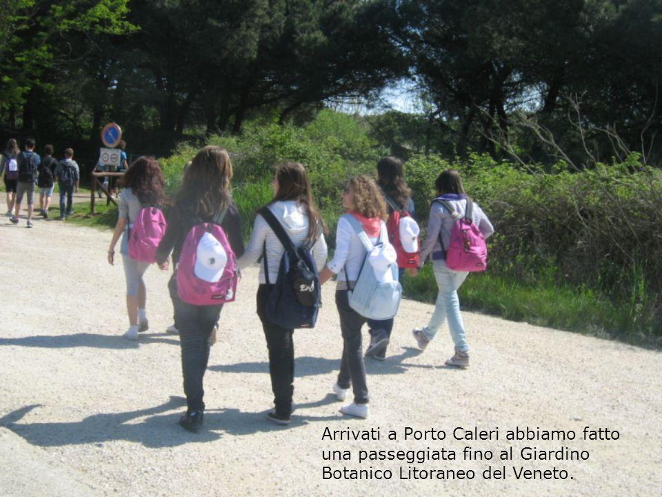 Arrivati a Porto Caleri abbiamo fatto una passeggiata fino al Giardino Botanico Litoraneo del Veneto.