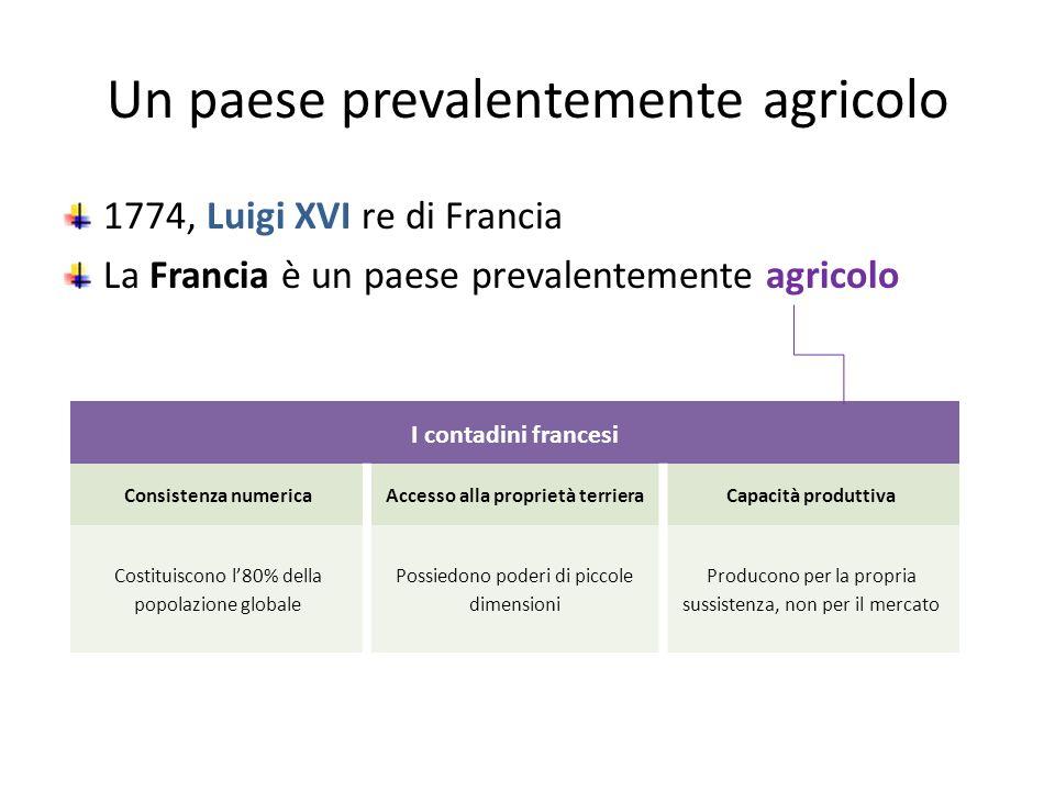 Un paese prevalentemente agricolo 1774, Luigi XVI re di Francia La Francia è un paese prevalentemente agricolo I contadini francesi Consistenza numeri
