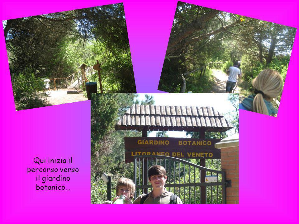 Qui inizia il percorso verso il giardino botanico…