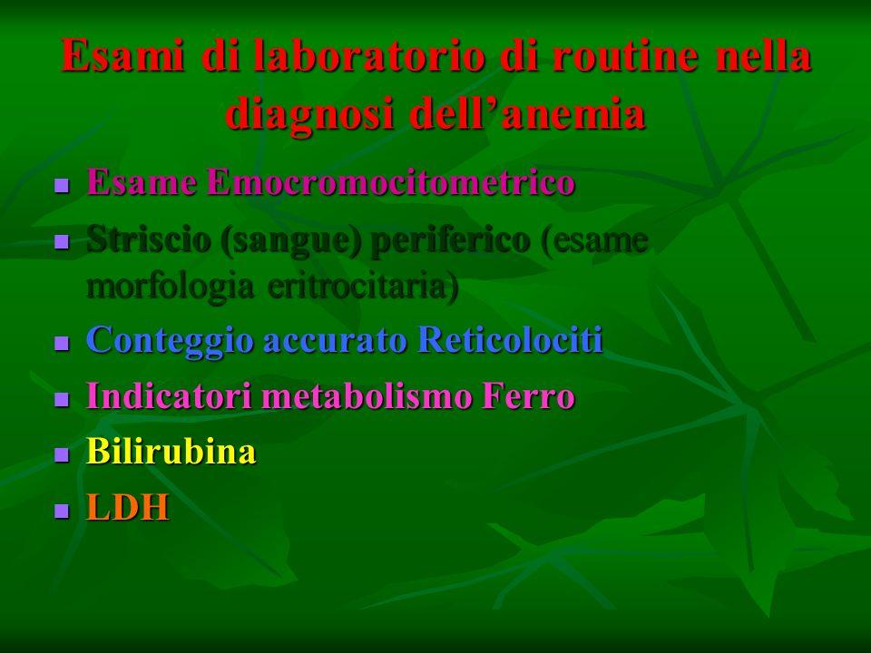 Esami di laboratorio di routine nella diagnosi dellanemia Esame Emocromocitometrico Esame Emocromocitometrico Striscio (sangue) periferico (esame morf