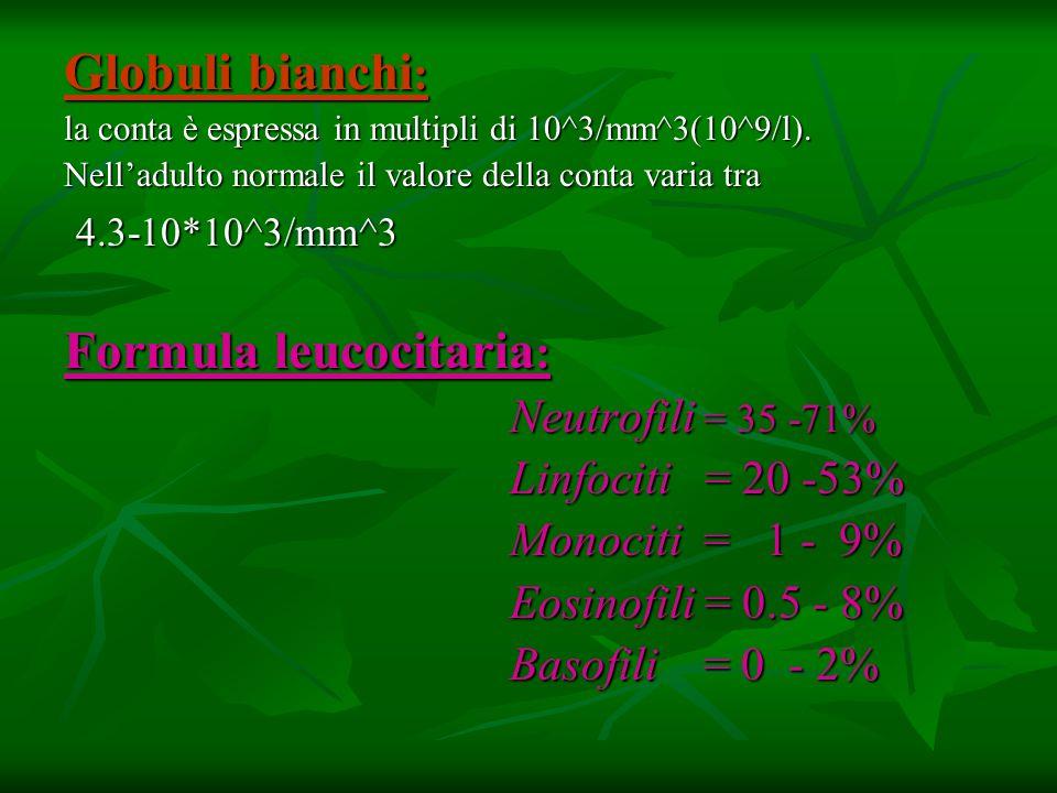Globuli bianchi : la conta è espressa in multipli di 10^3/mm^3(10^9/l). Nelladulto normale il valore della conta varia tra 4.3-10*10^3/mm^3 4.3-10*10^