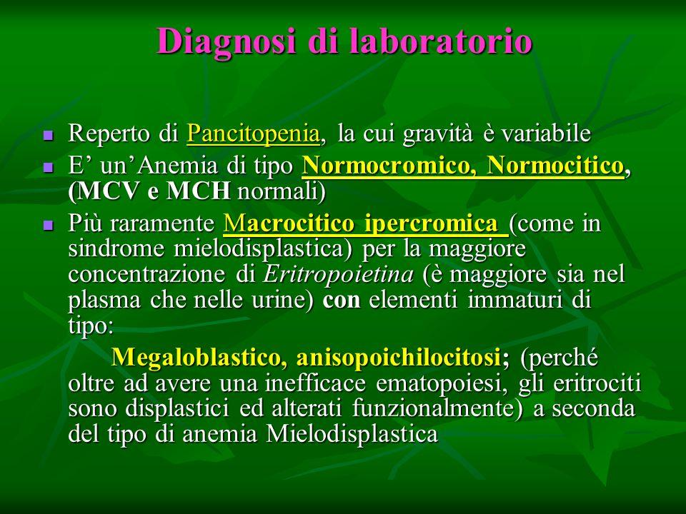 Diagnosi di laboratorio Reperto di Pancitopenia, la cui gravità è variabile Reperto di Pancitopenia, la cui gravità è variabile E unAnemia di tipo Nor