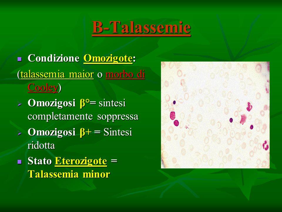 Β-Talassemie Condizione Omozigote: Condizione Omozigote: (talassemia maior o morbo di Cooley) Omozigosi β°= sintesi completamente soppressa Omozigosi