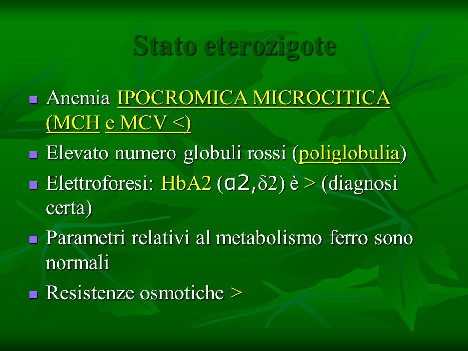 Stato eterozigote Anemia IPOCROMICA MICROCITICA (MCH e MCV <) Anemia IPOCROMICA MICROCITICA (MCH e MCV <) Elevato numero globuli rossi (poliglobulia)