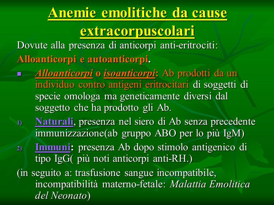Anemie emolitiche da cause extracorpuscolari Dovute alla presenza di anticorpi anti-eritrociti: Alloanticorpi e autoanticorpi. Alloanticorpi o isoanti