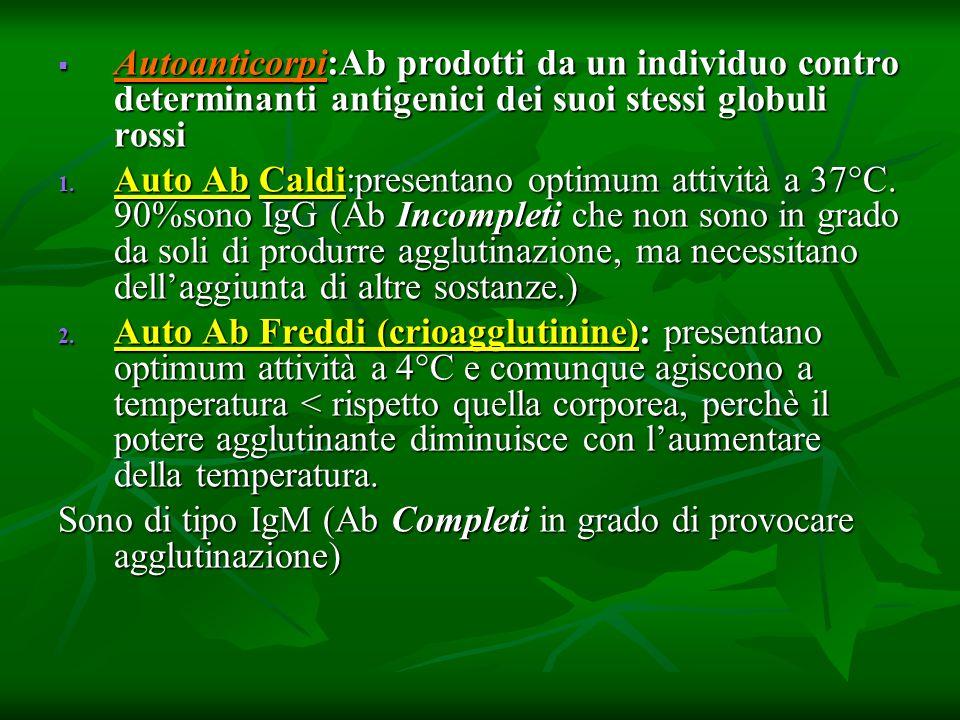 Autoanticorpi:Ab prodotti da un individuo contro determinanti antigenici dei suoi stessi globuli rossi Autoanticorpi:Ab prodotti da un individuo contr