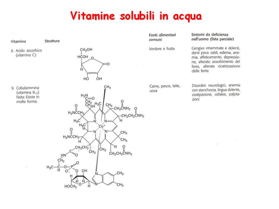 Le vitamine idrosolubili sono tutte componenti o precursori dei coenzimi (ad eccezione della vitamina C)
