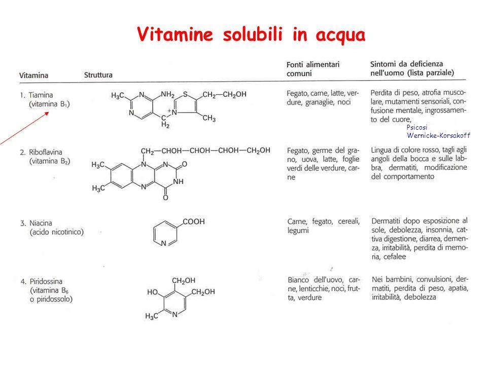 Vitamine solubili in acqua Psicosi Wernicke-Korsakoff