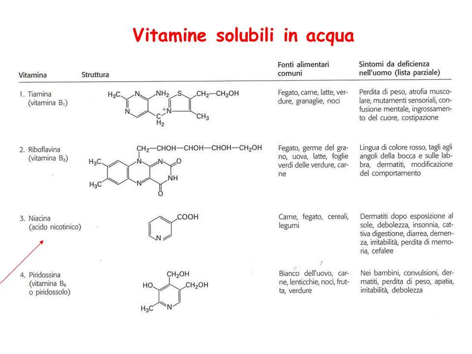 La piridossina (vitamina B 6 ), è costituita da un gruppo di 3 piridine sostituite: il piridossale, il piridossolo e la piridossamina.