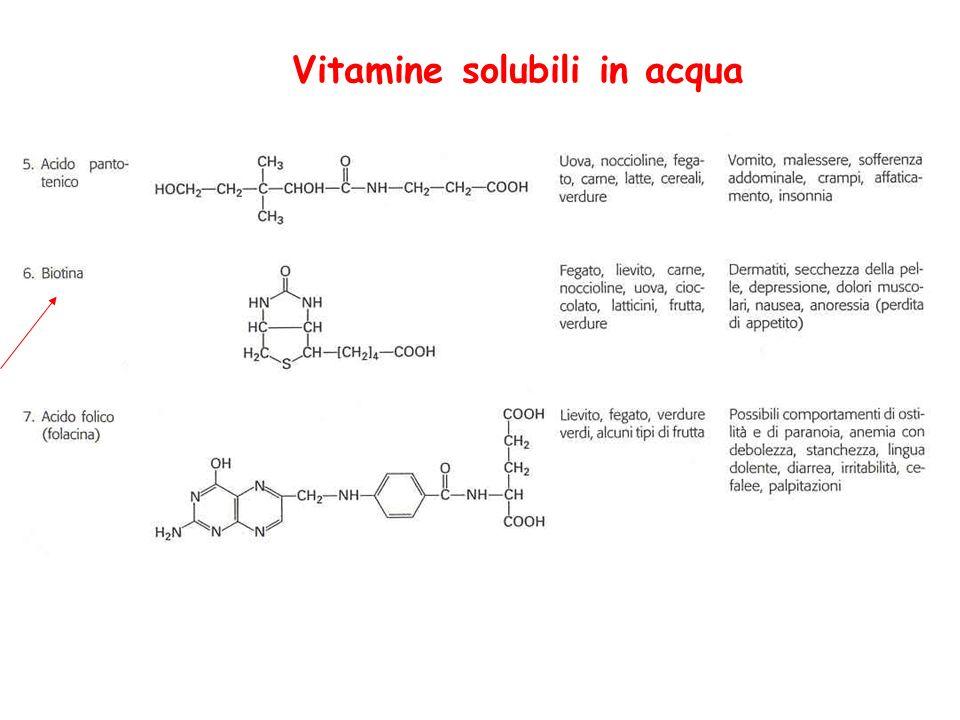 Acido folico folati diidrofolato reduttasi R= 7 unità di glutammato diidrofolato reduttasi N 10 N5N5 -CH 3 metile -CH 2 OH idrossimetile -CH 2 metilene -